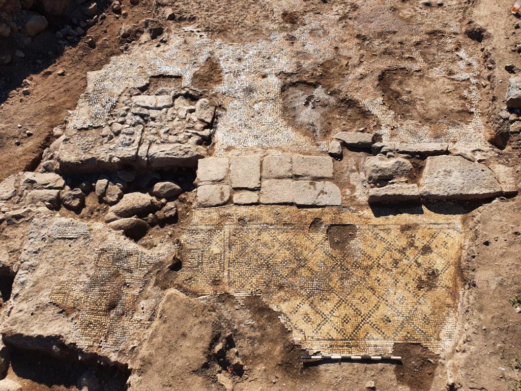 חפירה ארכיאולוגית (צילום: צחי לאנג)